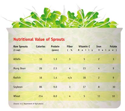 sprout comparison chart